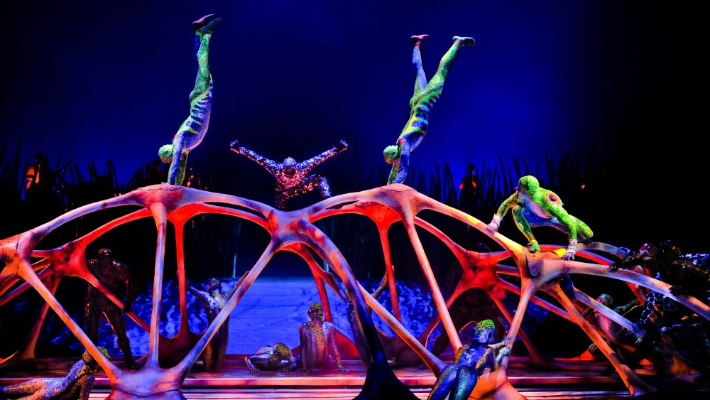 Шоу Totem — Цирк Дю Солей
