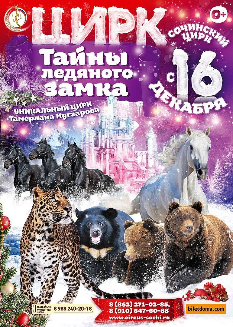Цирковое представление «Тайна ледяного замка»