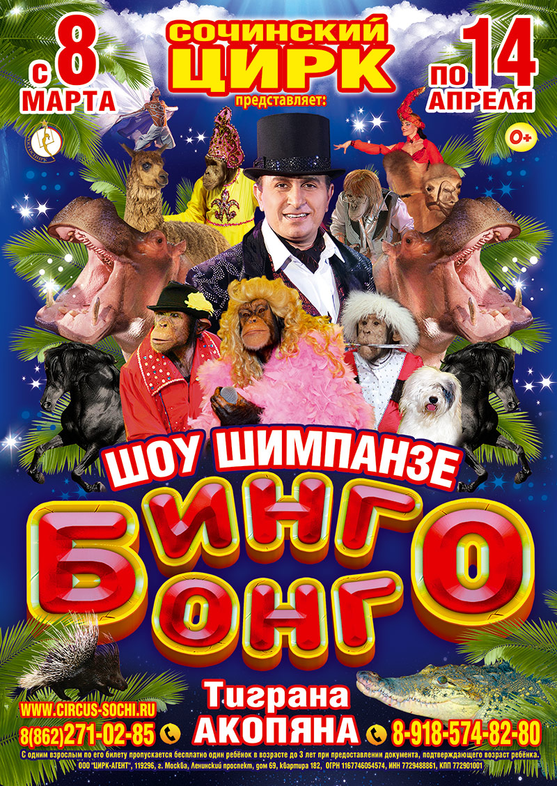 шоу шимпанзе «БИНГО БОНГО»